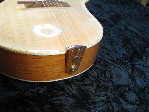 Tailpiece on the Ergocoustic