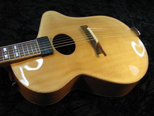 Ergocoustic Acoustic Ergo Guitar