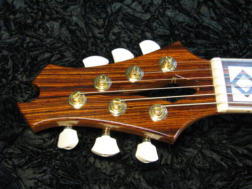 Finished Headstock on the Ergocoustic