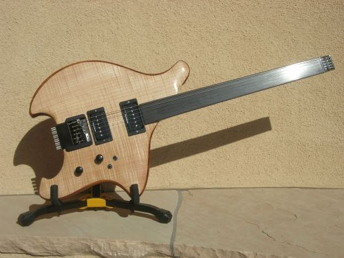 Fretless Equinox Electric Guitar