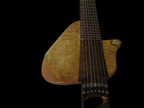 ERB Guitar Final